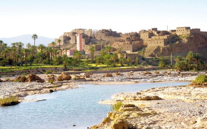 assa oasis